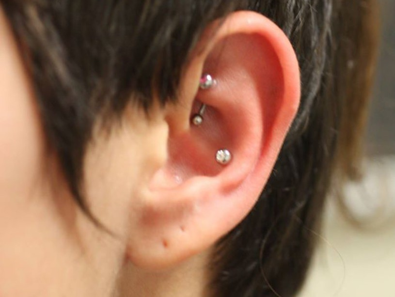rook conch